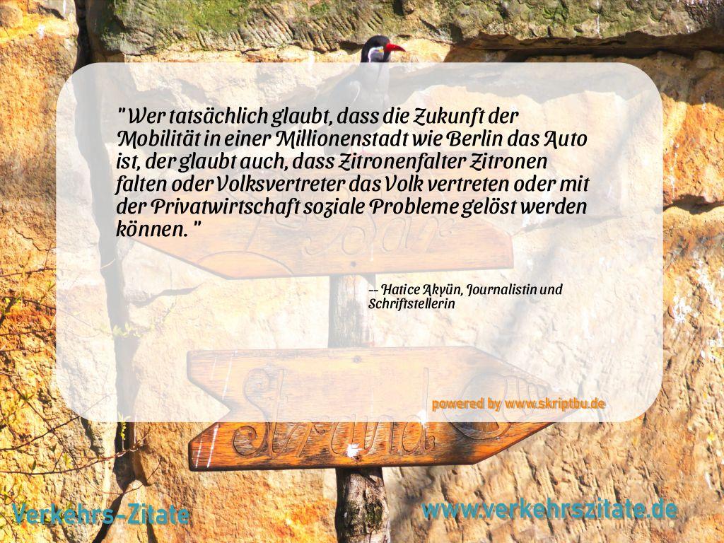 Wer tatsächlich glaubt, dass die Zukunft der Mobilität in einer Millionenstadt wie Berlin das Auto ist, der glaubt auch, dass Zitronenfalter Zitronen falten oder Volksvertreter das Volk vertreten oder mit der Privatwirtschaft soziale Probleme gelöst werden können., Hatice Akyün, Journalistin und Schriftstellerin